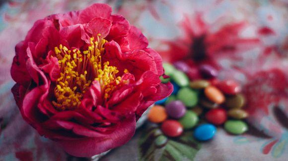 Foraged floral